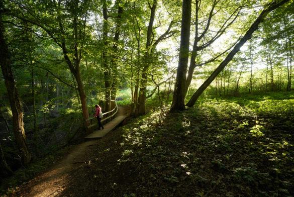 Wanderrouten Schnittlinger Loch