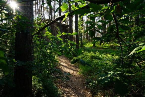 Wanderrouten Wernsbacher Steinbrüche