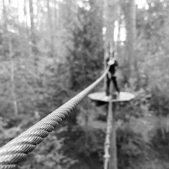 "Kletterparks ""Abenteuerwald"" Enderndorf"